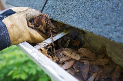 Gutter_Cleaning_Mckinney
